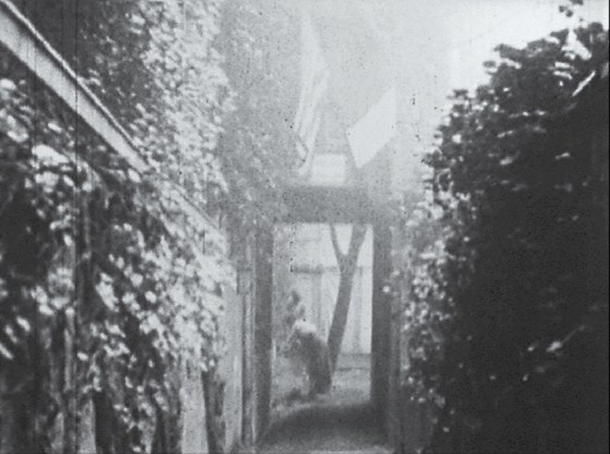 A view along an ivy lined alley.