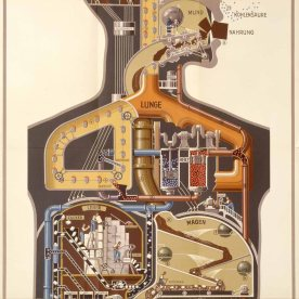 Illustration of human biological systems as industrial systems.