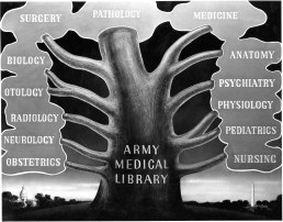 Tree with multiple branches. Each branch is titled a different area of medicine.
