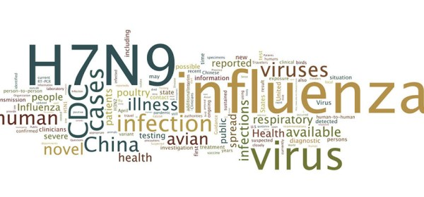 Word cloud in which influenza, H7N9, Health, Virus, and CDC figure prominantly