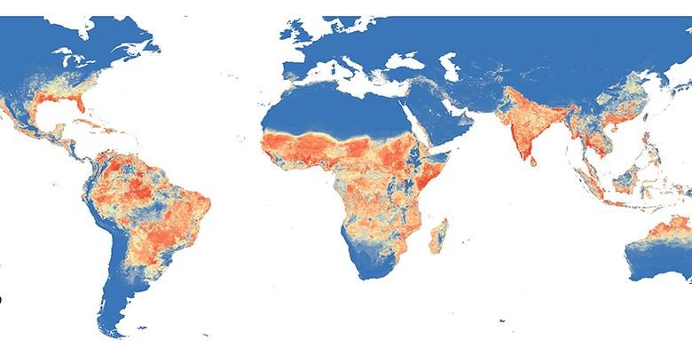 Epidemiological map of global Zika