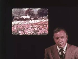 In a still from a film a man in a suit speaks to the camera while a picture of a field of flowers infront of a house is displayed.