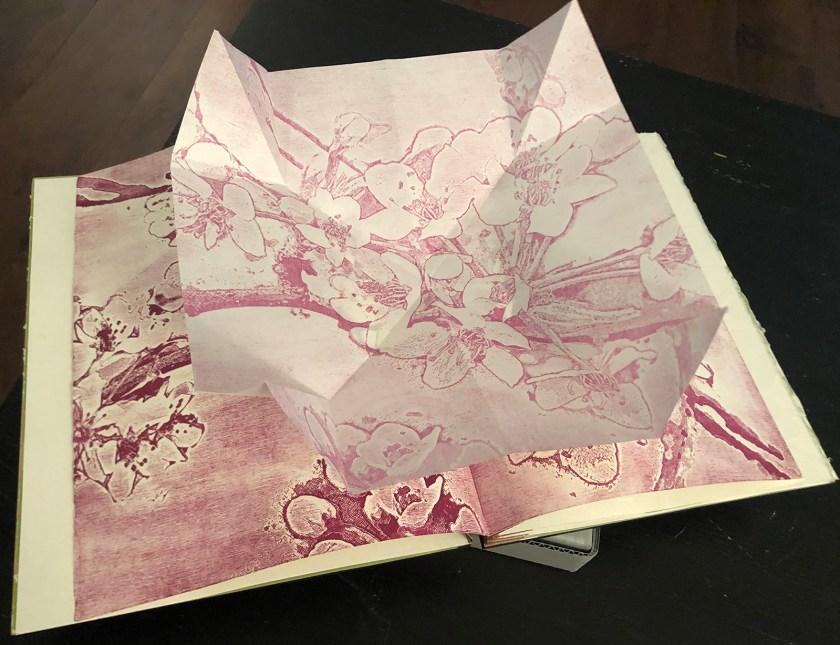 """Inside spread from artist book, """"Caudex Folium"""""""