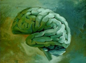 An artists rendering of a human brain in profile.