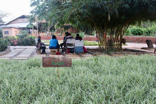 Legon Botanical Gardens in Accra, Ghana. Credit: Circumspecte.com