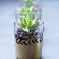 mini succulent planter {diy}