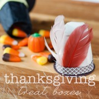 thanksgiving hat treat boxes {diy}