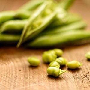 podded broad beans