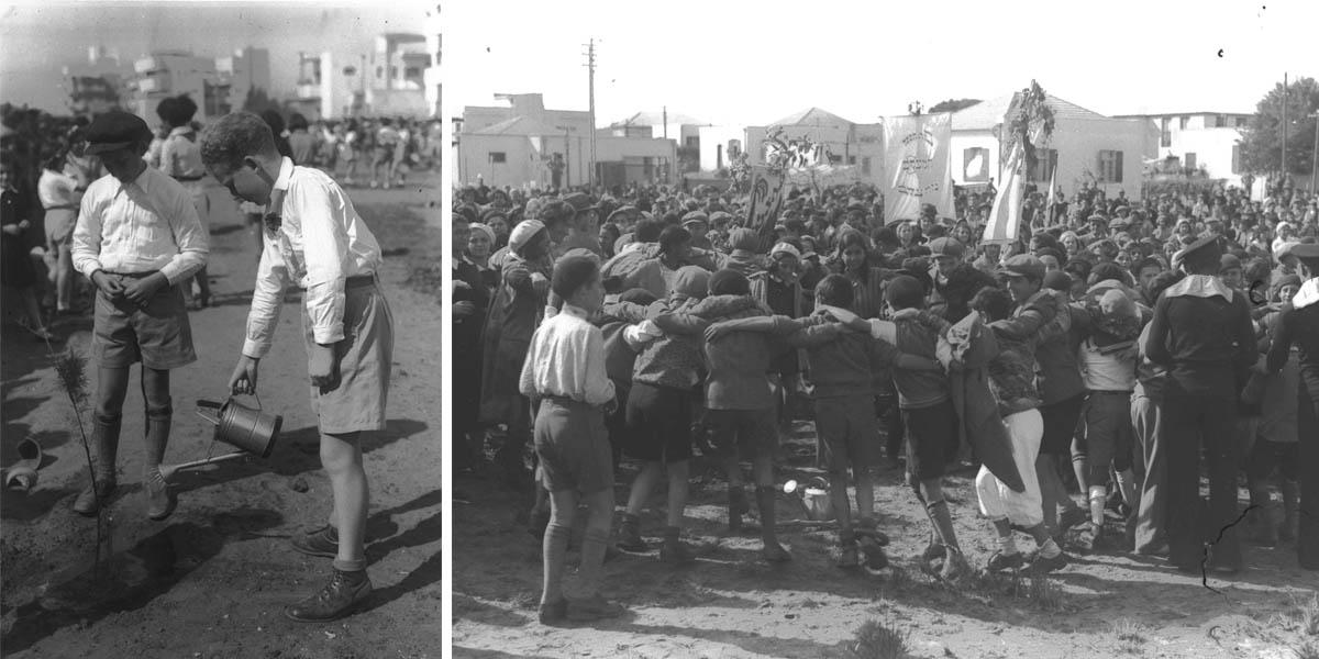 Ту би-Шват в Израиле, 30-е