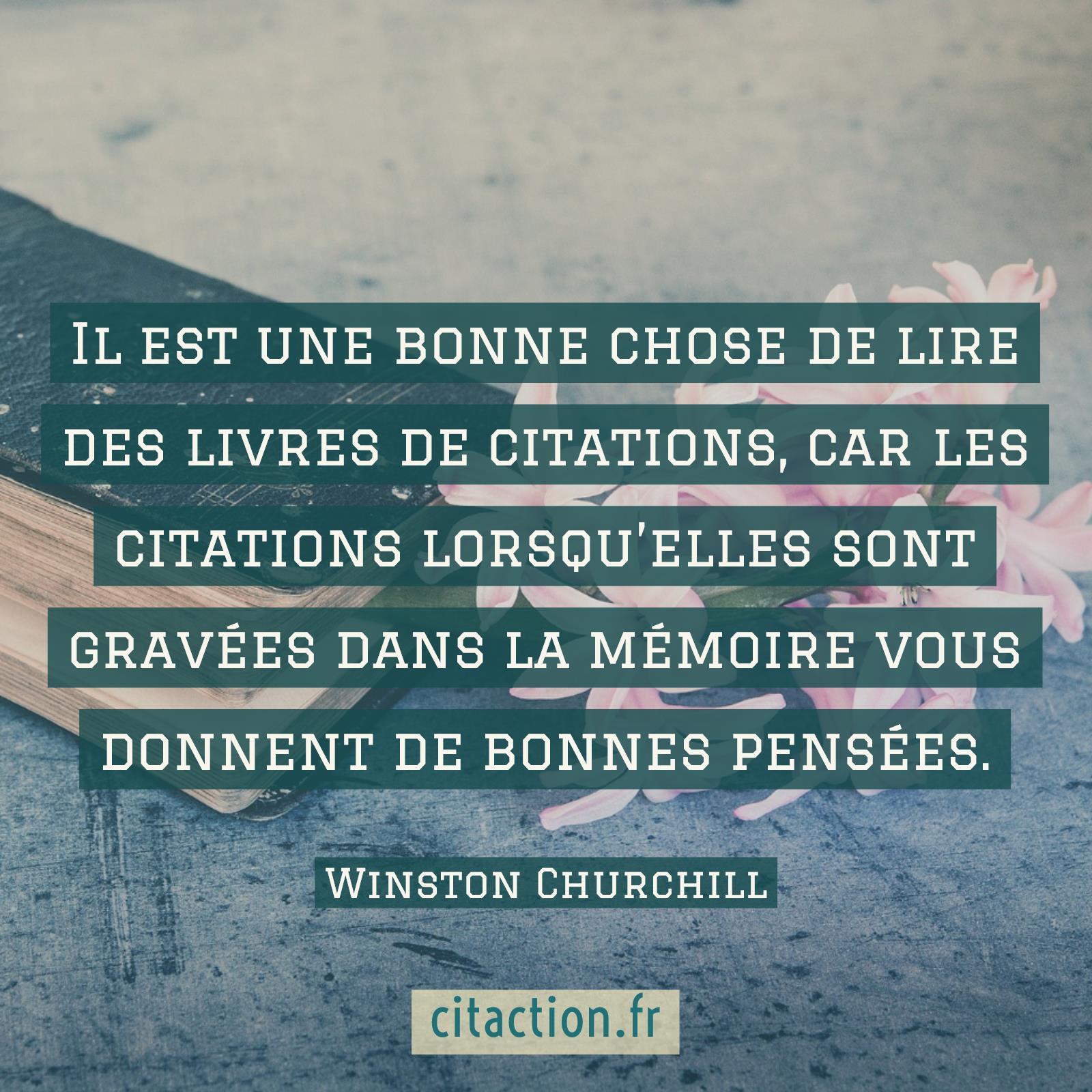Il est une bonne chose de lire des livres de citations, car les citations lorsqu'elles sont gravées dans la mémoire vous donnent