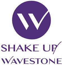Shake'Up by Wavestone 2018-2019