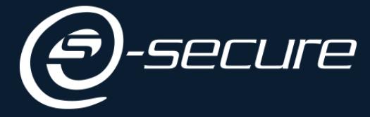 E-SECURE