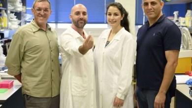 Photo of Científicos logran almacenar información digital en ADN