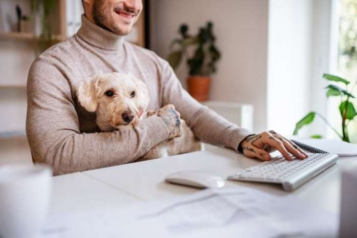 How to Prepare Your Dog for Your Return to Work
