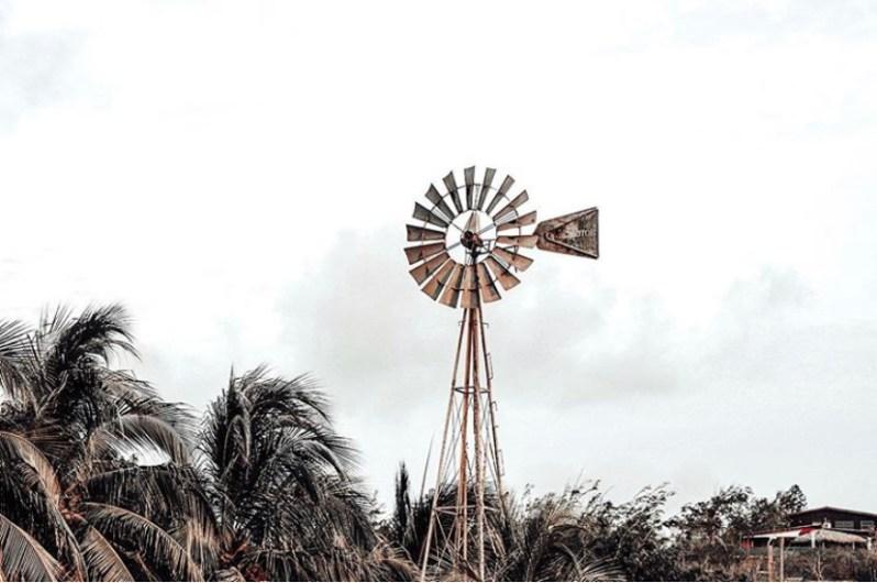 Curacao windmolen