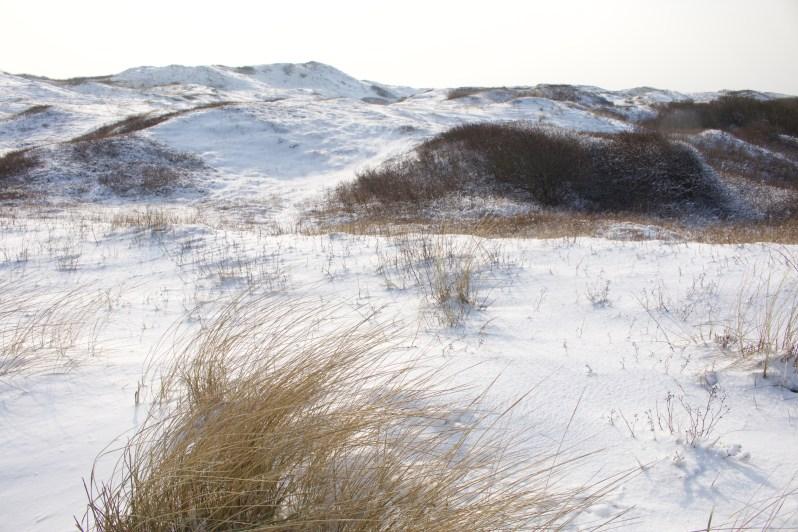 Texel-strand-sneeuw