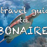 A travel guide to Bonaire