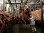 Fabrikë mishi në Brazil. Siguria ushqimore. Citizens Channel