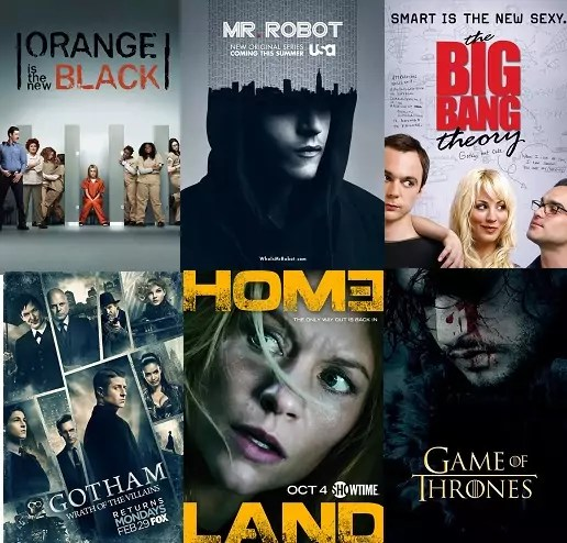 ©Netflix ©Fox ©USA Network ©Showtime ©CBS ©HBO Orange is the new black gotham mr robot homeland the big bang theory game of thrones finale