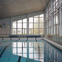 Woodstock citizen zoo - Woodstock swimming pool opening hours ...