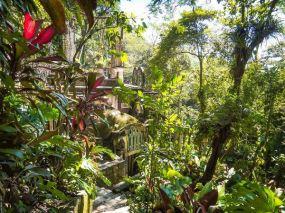 Las Pozas, Xilitla, Mexico, Luci Nieto