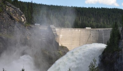 Value of Hydrologic Forecasting for Intelligent Hydropower Operations
