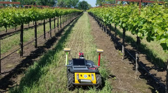 RAPID robot-assisted precision irrigation delivery