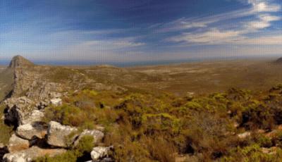 Hestir Turns NASA Technology Toward Earth's Biodiversity