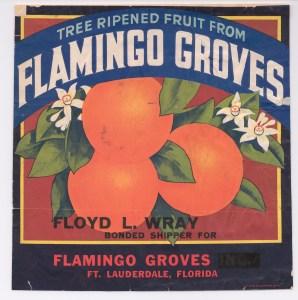 Flamingo Groves