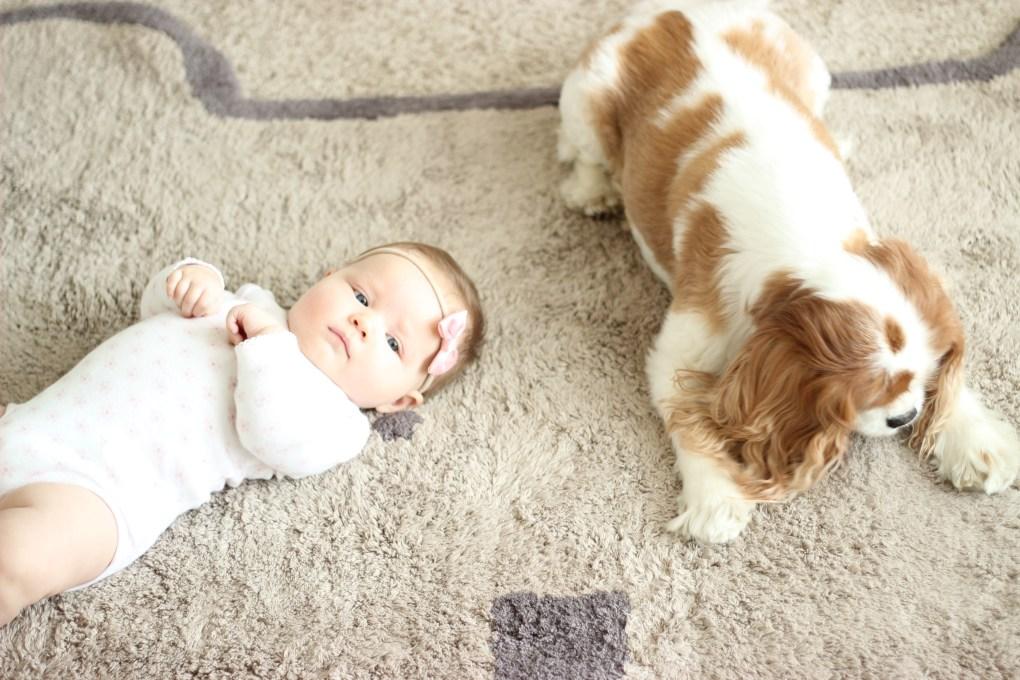 LorenaCanals-rugs-siblings