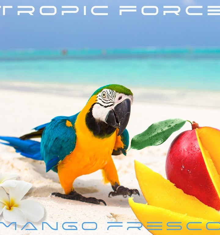 TROPIC FORCE unleash a mix of genres on their new drop 'Mango Fresco'