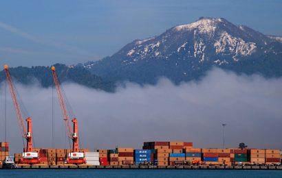 Container Terminal Declares $1.2B Revenue For 2018