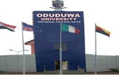 Oduduwa University Graduates 717