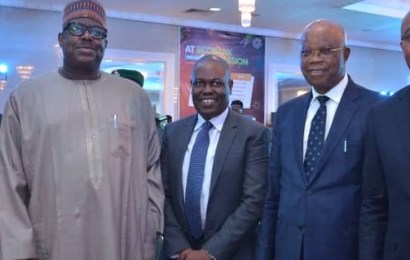 Ecobank: Nigeria Can Feed Africa's 1.2b Population