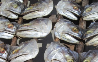 Lagos To Increase Fish Production By 60,000 Metric Tons In 2021