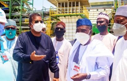 Minister: Dangote Fertiliser Crucial To Nigeria's  Agricultural Agenda