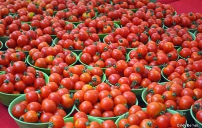 Prices Of Local Rice, Tomato Drop In Enugu