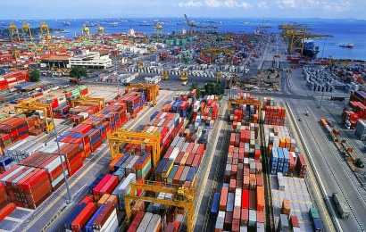'Export Africa Commodities As Single Products To Avoid Dual Taxation'
