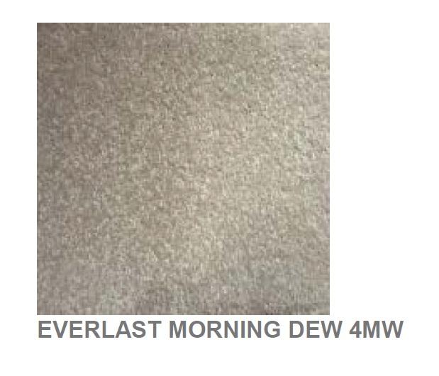 Everlast Morning Dew
