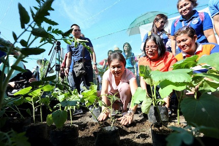 Philippines: Food grown close to home: Urban farming flourishes during pandemic