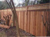 Cedar Fence with