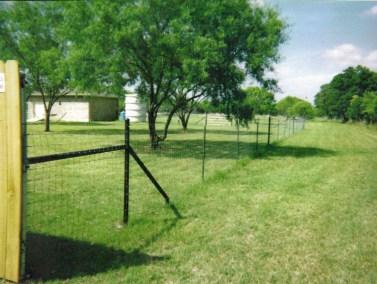 6' Field Fence
