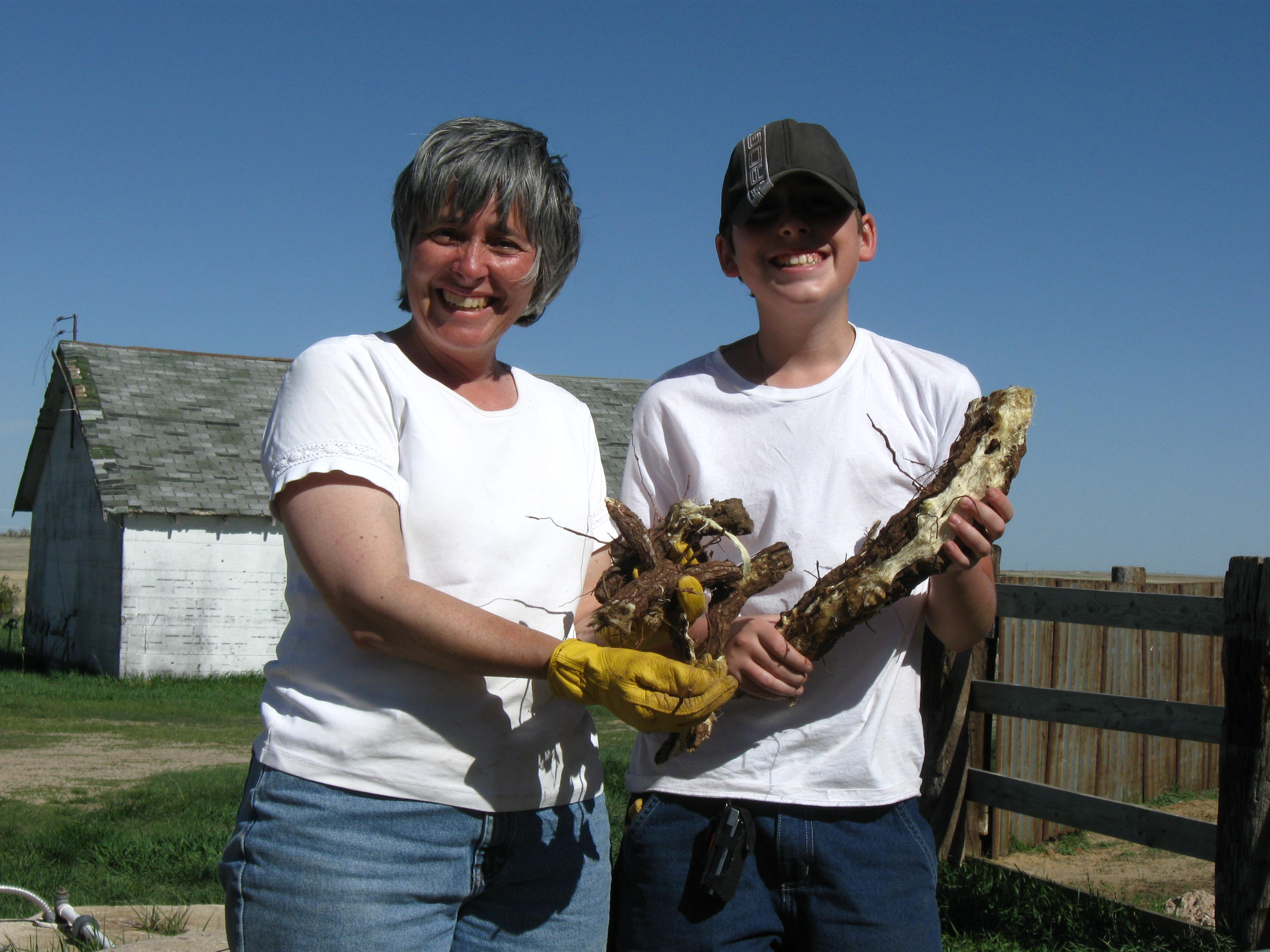 Returning victorious with hands full of yucca root