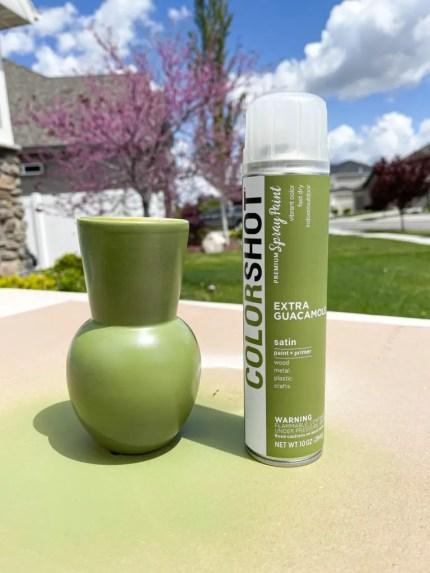 Green Colorshot Spray Paint