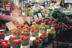 Biological Market of Príncipe Real
