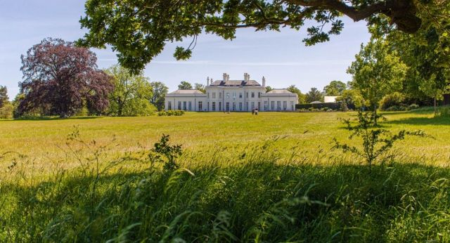 The back lawn and Hylands House