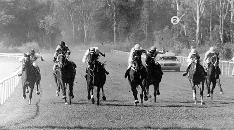 A PIECE OF HISTORY   Cannon Park Racecourse