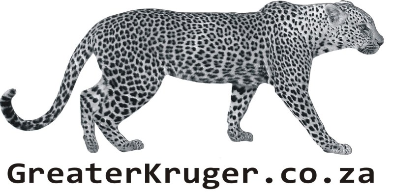 Offering affordable shuttle services to and from kruger park