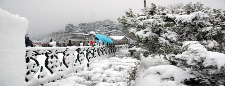 A panoramic view of Shimla after receiving fresh snowfall on Friday.Also seen in the picture is a tree almost uprooted due to heavy snow fall. Photo By: Amit Kanwar