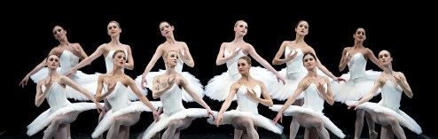 On Pointe and Prickled Tink:  Pricked with the Boston Ballet